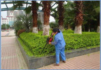 华辉实业承接绿化工程、园林景观设计施工等