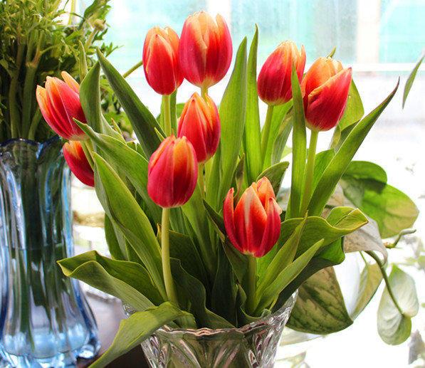 鲜花速递、一周一花、开业花篮、会议台花、婚礼鲜花